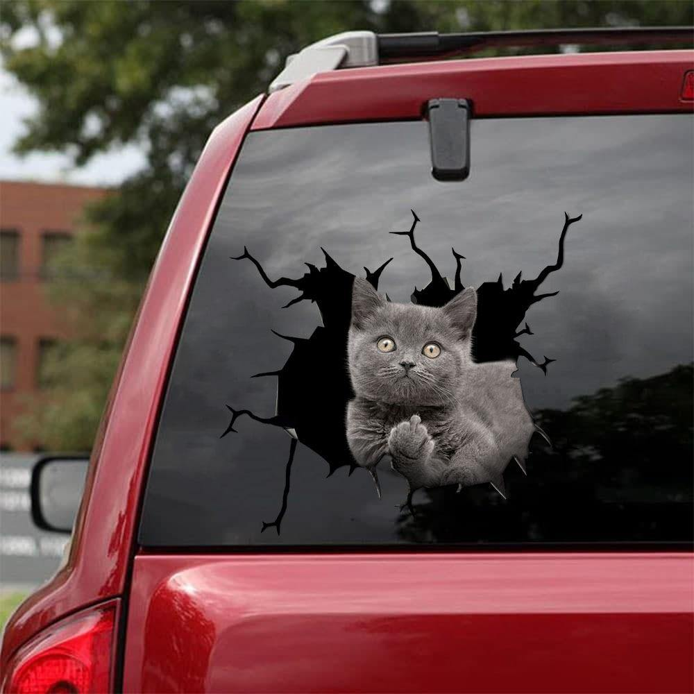 FUNNY CATS CRACK CAR STICKER CATS LOVER