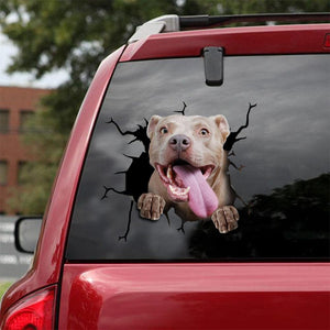 PITBULL CRACK CAR STICKER DOGS LOVER