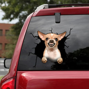 CHIHUAHUA CRACK STICKER DOGS LOVER 5