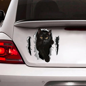 Car Sticker Cats Lover (209)