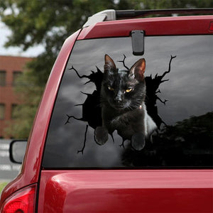 BLACK CAT CRACK CAR STICKER CATS LOVER