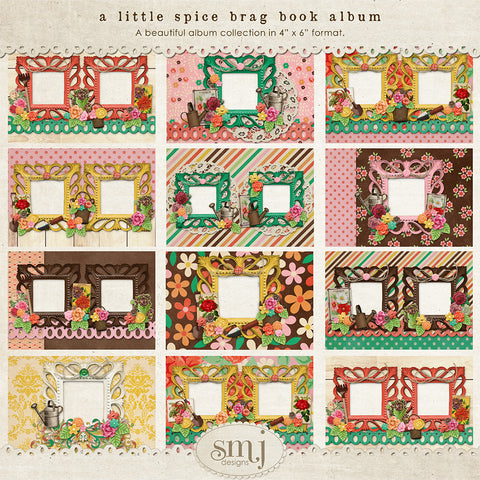 A Little Spice Brag Book Album