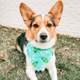 Peas Be Mine Reversible Pet Bandana