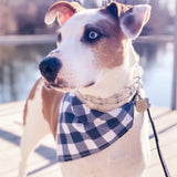 Cinnamon Roll Reversible Pet Bandana