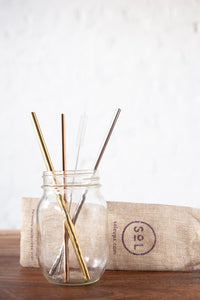 One Less Stainless Steel Straw Kit