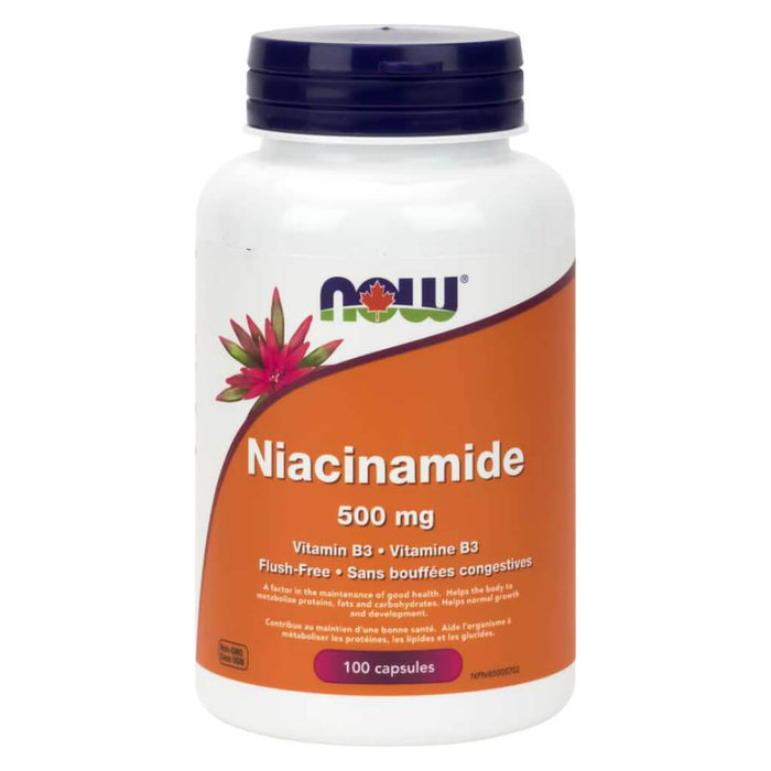 Bottle of Niacinamide Vitamin B3 500 mg 100 Capsules