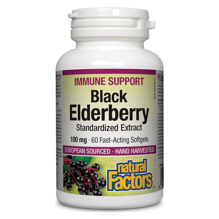 Bottle of Natural Factors Black Elderberry 100 Milligrams Standardized Extract 60 Softgels
