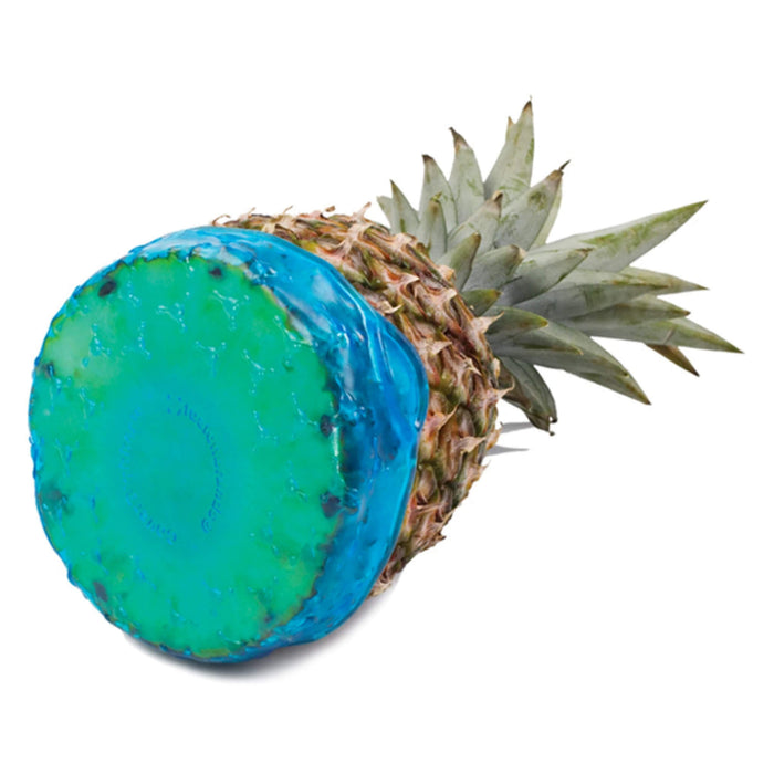 Fusionbrands Large CoverBlubber on an Pineapple