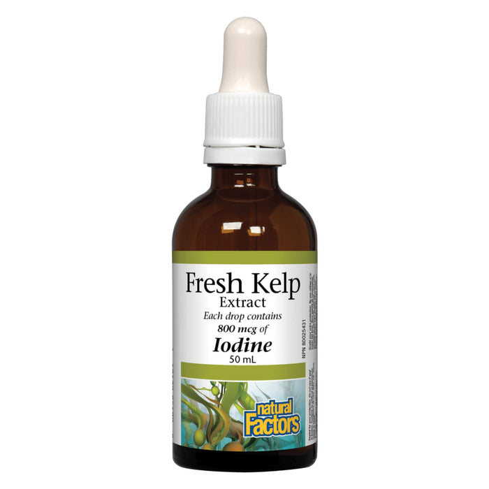 Dropper Bottle of Natural Factors Fresh Kelp Extract 50 MIlliliters