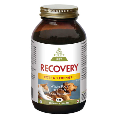 Bottle of Purica Pet Recovery Extra Strength 120 Chewable Tablets