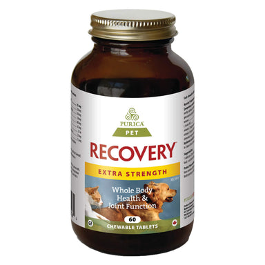 Bottle of Purica Pet Recovery Extra Strength 60 Chewable Tablets