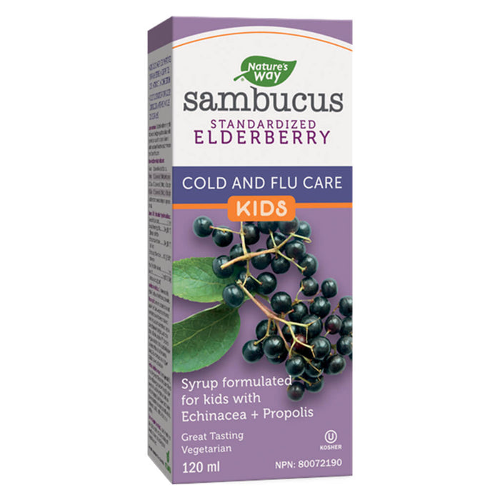Box of Nature's Way Sambucus Standardized Elderberry Cold & Flu Care for Kids 120 Milliliters