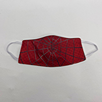 Spider Web Face Cover