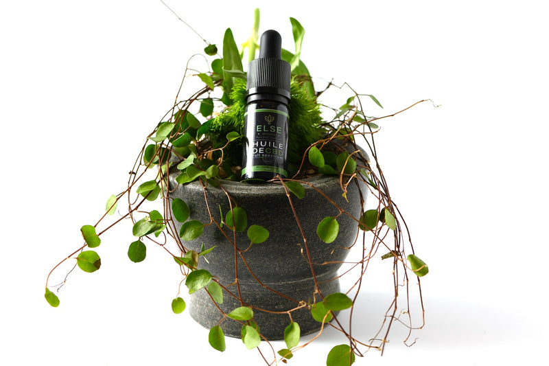 products/CBD_oil_10_02.jpg