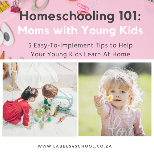 Homeschooling 101: Moms with Young Kids