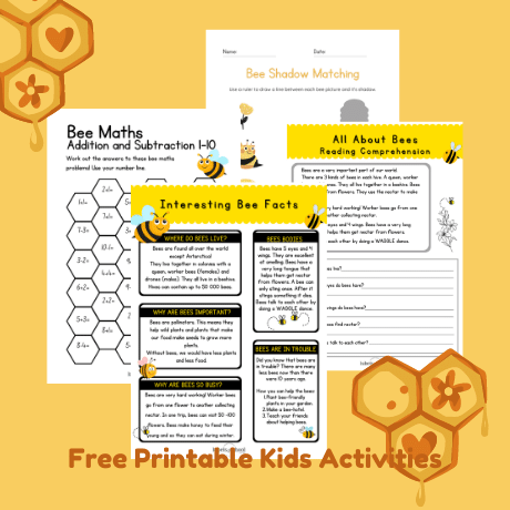 Busy Bees Workbook