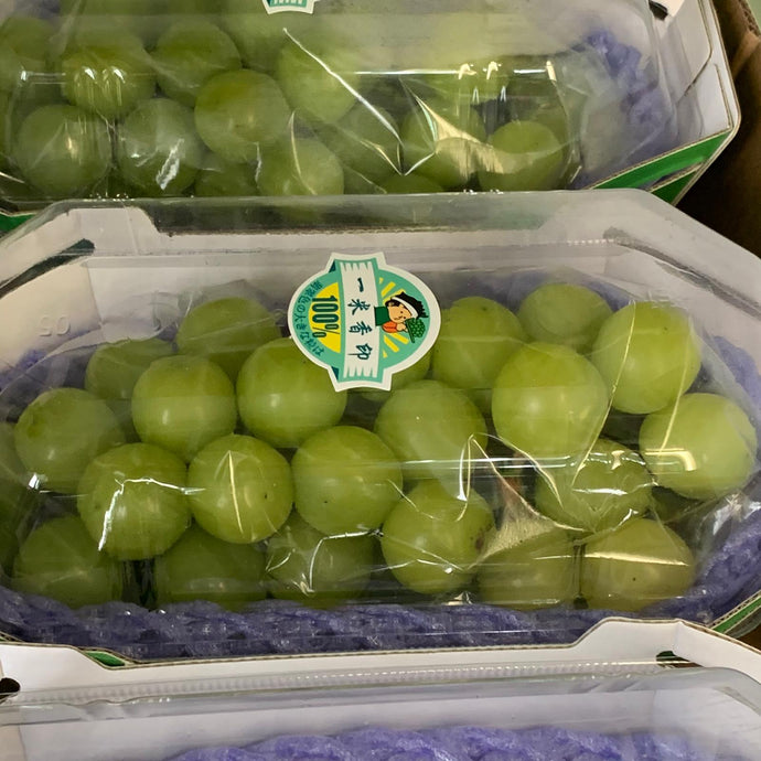 Shine Muscat Grapes China x 1 pkt