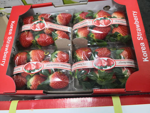 Korea Premium Strawberry x 1 Pkt
