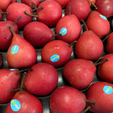 Piqaboo Red Pear x 4