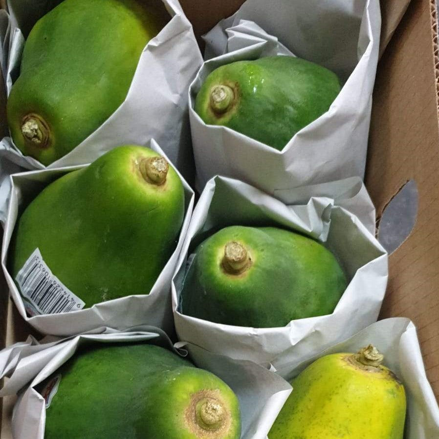 Phillipine-Dole-Papaya.jpg