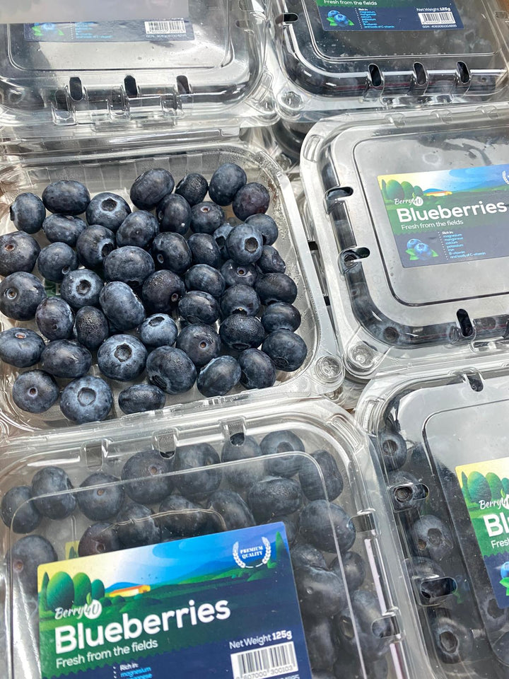 Serbia Blueberries x 2
