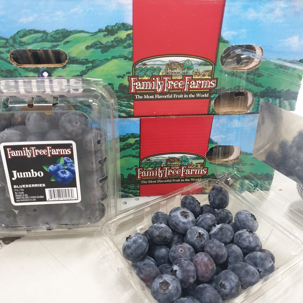 USA Jumbo Blueberries x 3