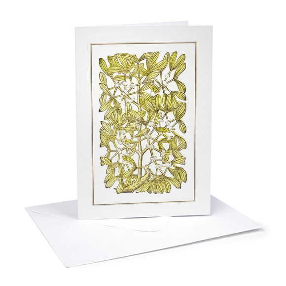 Christmas Cards Mistletoe (Pack of 6)