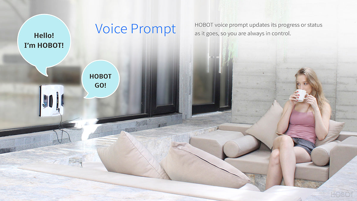Hobot Voice Prompt