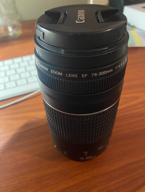 Canon Lens 75-300 MM