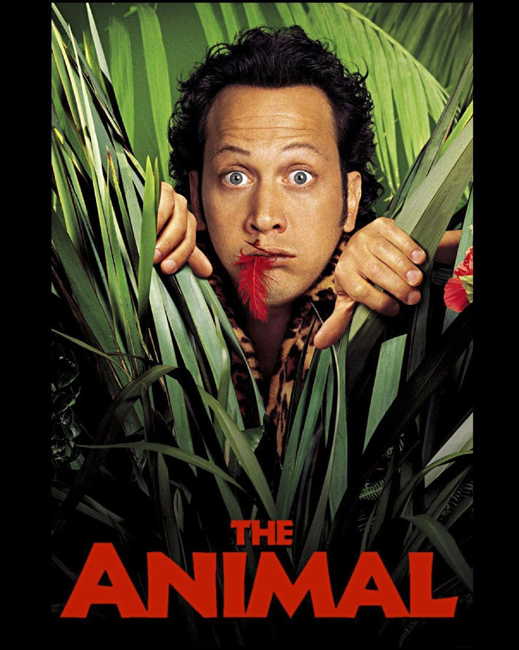 Rob Schneider - Signed The Animal Image (8x10, 11x14)