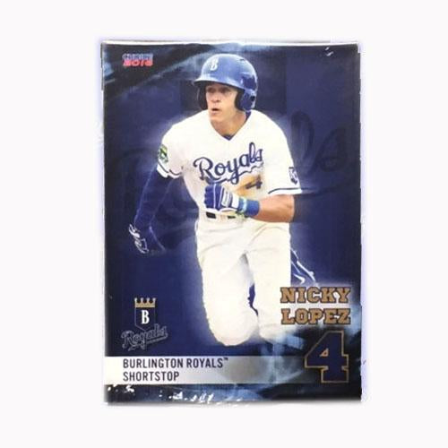 Burlington Royals 2016 Team Card Set