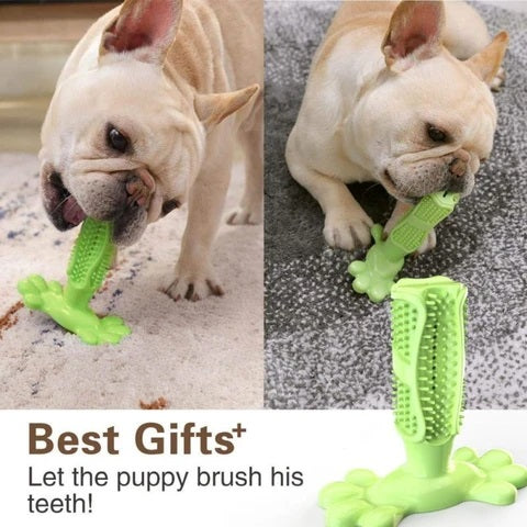 Dog Toothbrush Stick can clean your dog's teeth effectively and remove plaque. The toothbrush encourages pets to clean their teeth every day. It designed to clean teeth on both sides, and it is angled to fit comfortably in your dog's mouth.