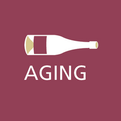 grape and bean aging of wines