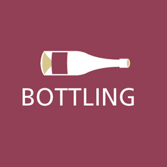 grape and bean bottling of wines