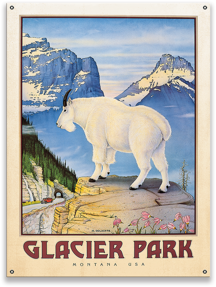 "Glacier National Park Mountain Goat Monte Dolack 28""x38"" Metal Sign"