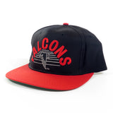 Atlanta Falcons Snapback Hat