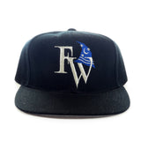 Fort Wayne Tin Caps Snapback Hat