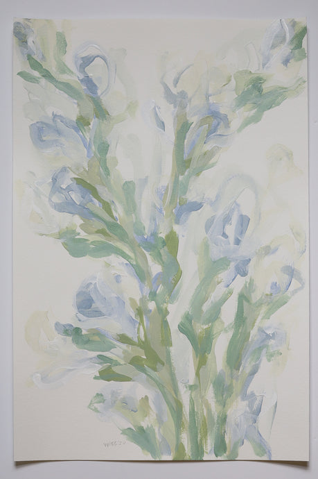 White Gladiolus, No. 2 - 12x18