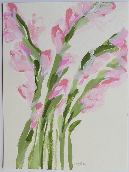 Blush Gladiolus, No. 2 - 9x12