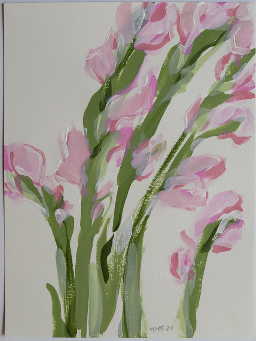 Blush Gladiolus, No. 3 - 9x12