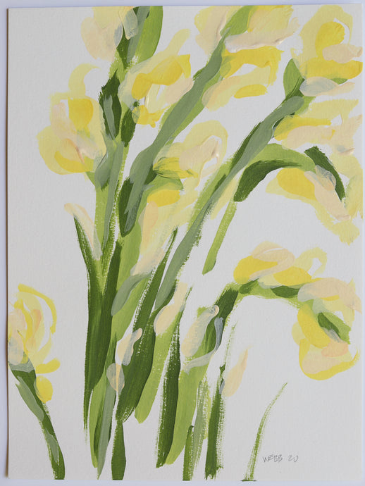 Yellow Gladiolus, No. 1 - 9x12