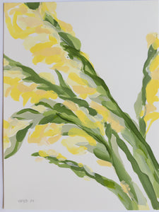"Yellow Gladiolus, No. 3 - 9x12"" Paper"