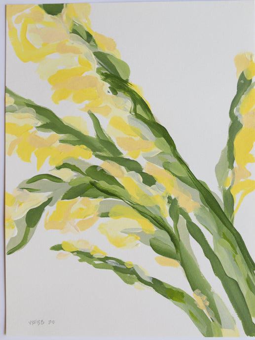 Yellow Gladiolus, No. 3 - 9x12