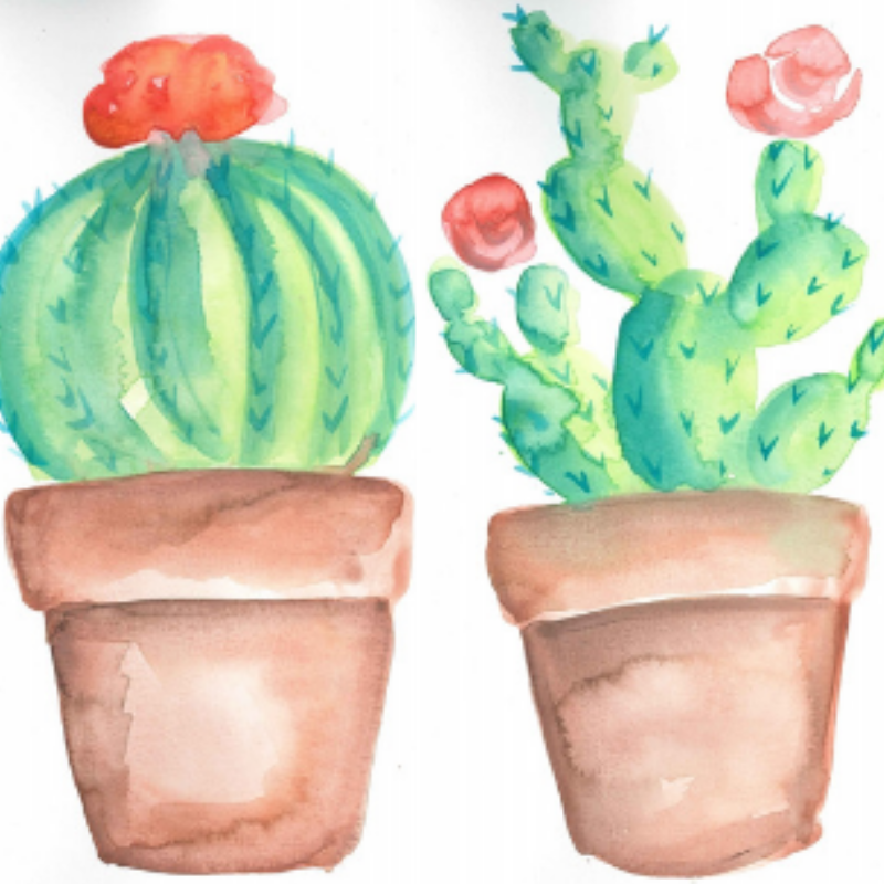 Summer Watercolor Painting Party: Succulents!