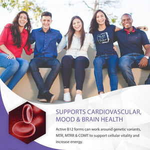 b12 complete supports cardiovascular, mood & brain health