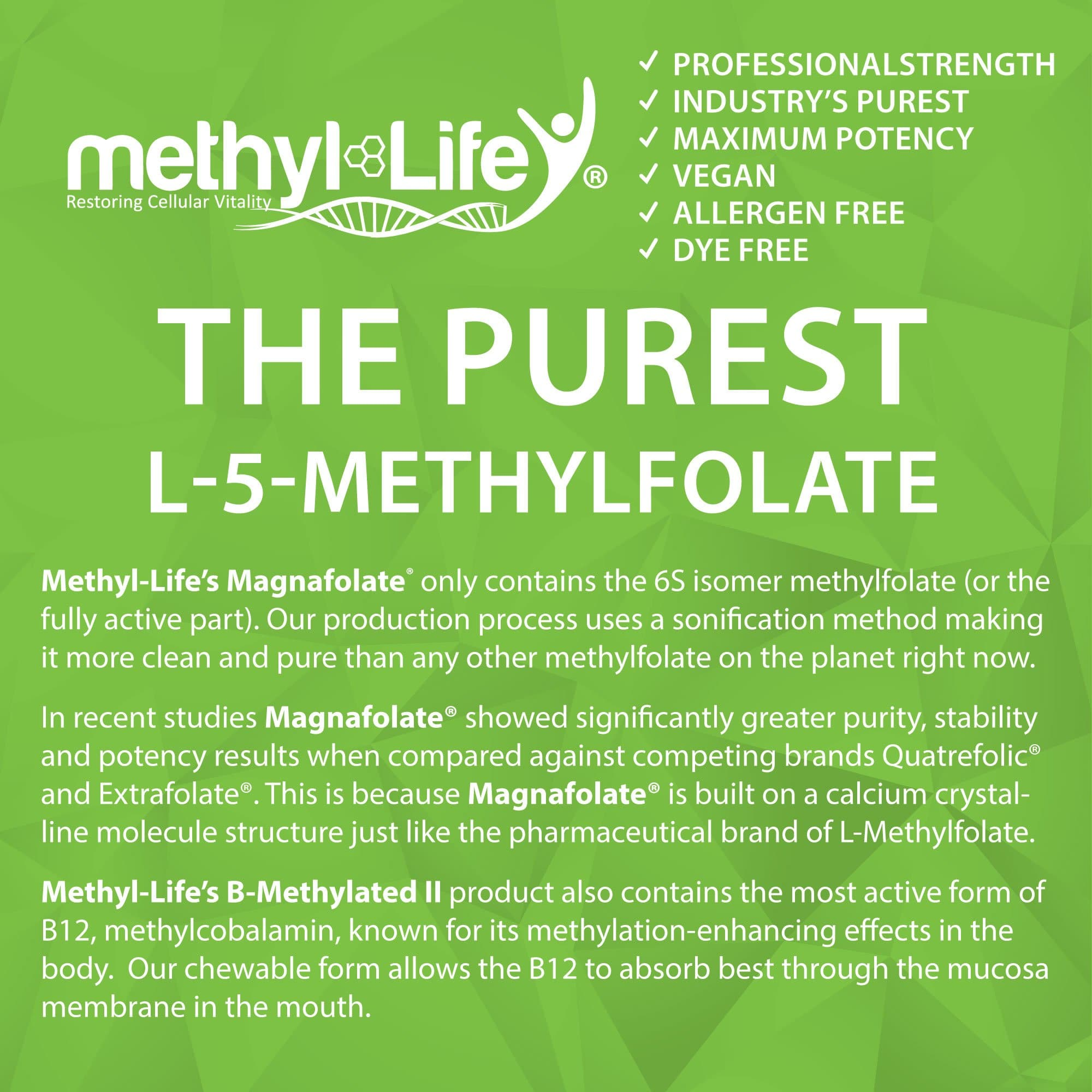 b methylated (the purest l-5-methylfolate)
