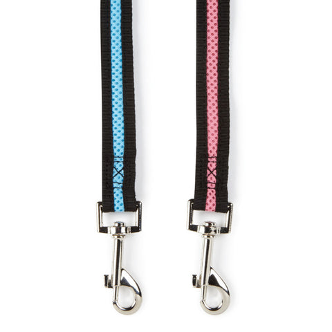 Casual Canine Mesh Dog Leads