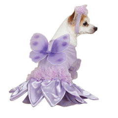 Casual Canine Sugar Plum Fairy Costumes