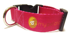 My Pet and I Dog Collar