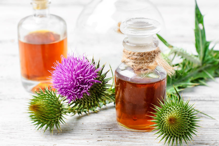 Clinical trials may suggest Milk Thistle to have therapeutic effects on Diabetes
